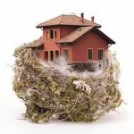 empty-nest-house-150x150